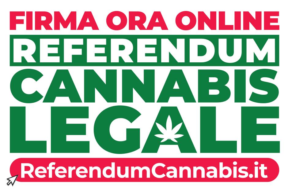 LOGO referendum cannabis